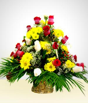 Flores Latacunga Envio Flores A Domicilio Enviar Flores A