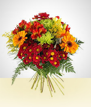 Gerbera - Bouquet multicolor